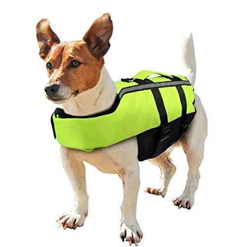 Neusky Pet Hundeschwimmweste (M, Blassgrün)